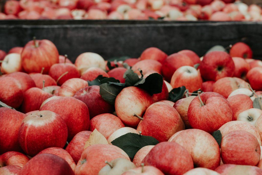 Hjemmelavet æblejuice