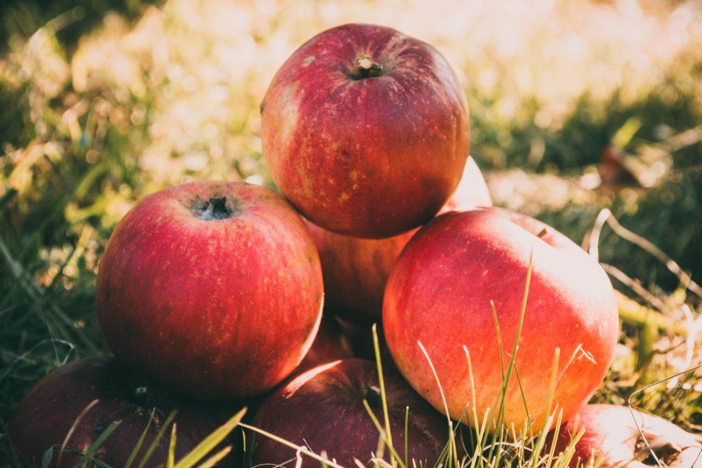 Næring i æbler